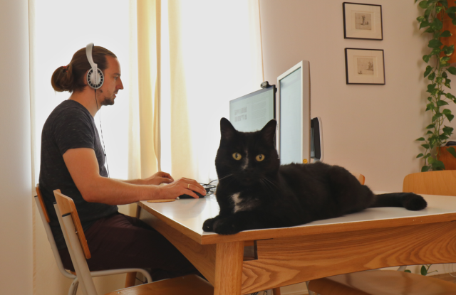 PhD students working at his dinning table with his black cat sitting on table.